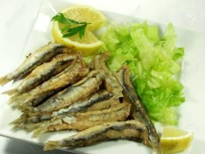 Blog fish